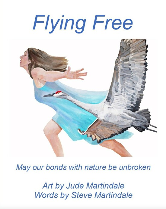 Flying Free cover